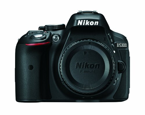 Is the Nikon D5300 Good for YouTube Vlogging?