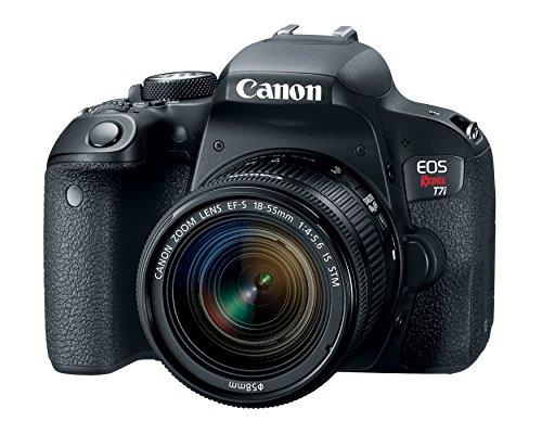 Best Dslr Cameras For You Vlogging
